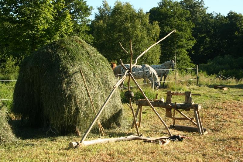 hø og heste