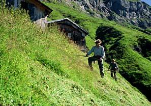 Alpeslåning
